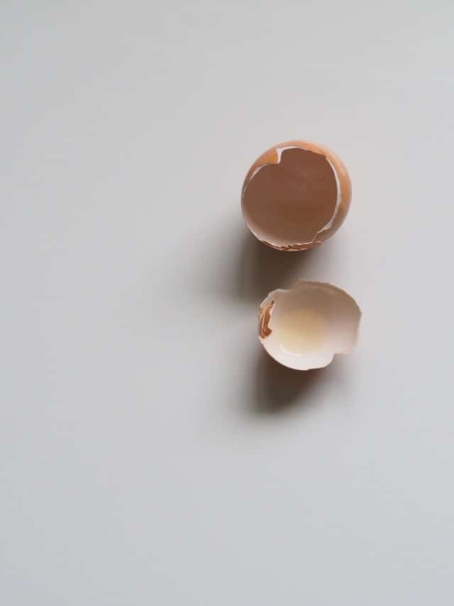 Fart Egg Without The Yolk