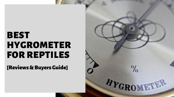Best Hygrometer For Reptiles [Reviews & Buyers Guide]