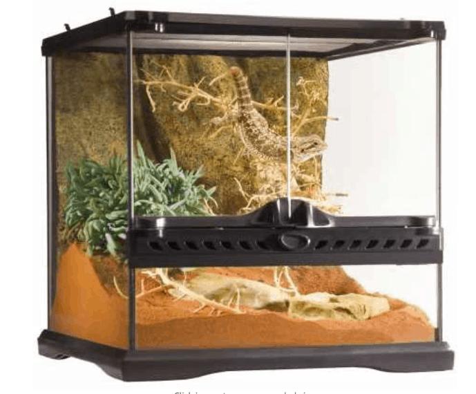 "Exo Terra Glass Natural Terrarium (8 x 8 x 8"")"