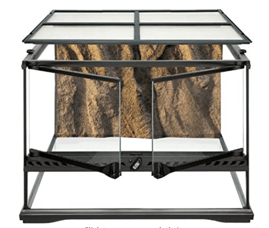 "Exo Terra Short All Glass Terrarium (18 x 18 x 12"")"